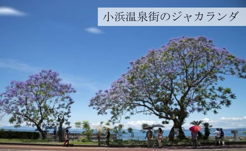 【雲仙市】JTBふるぽWEB旅行クーポン(150,000点分)
