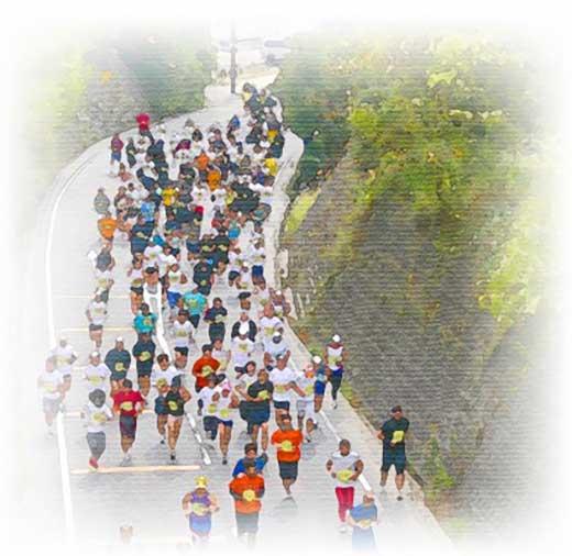 「2019あいの土山マラソン」出走権
