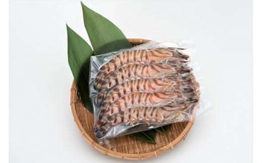 活き〆急速冷凍天然車エビ(大分県佐伯産)300g 生食用