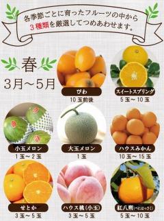 春夏秋冬旬のフルーツセット定期便年4回コース果物の食べ比べセット【3品目おまかせ】