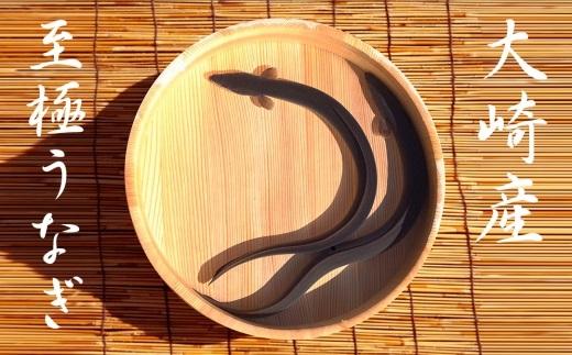 うなぎの柳澤 うなぎ蒲焼4尾セット