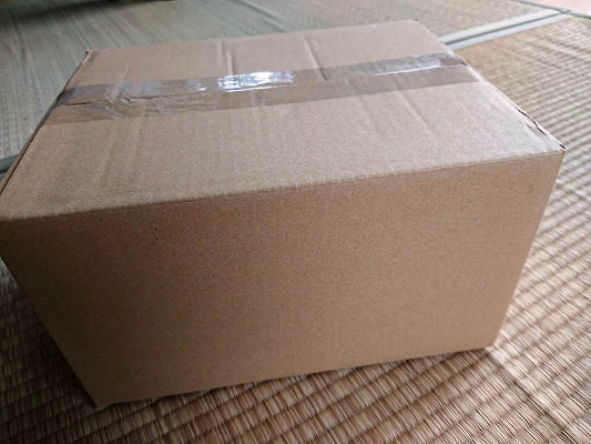 《冷凍》純国内産 生きくらげ黒(約600g)◆配送時期:2020/6/30~