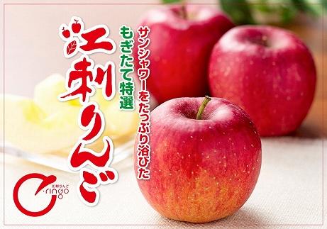 高級ブランド『江刺りんご』厳選サンふじ3kg【300個限定・11月10日までの受付】