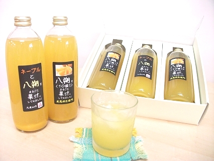 丸ごと果汁!ジュースセット(500cc×3本)