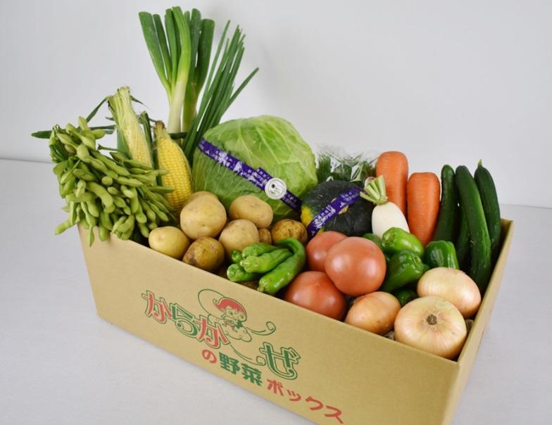 伊勢崎産<採れたて!店長厳選!>新鮮野菜詰合せ
