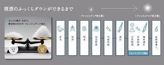 【東京西川】羽毛ふとん/ジーリンホワイトグースダウン90%/シングル
