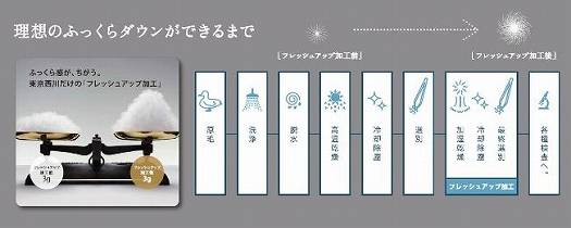 【東京西川】羽毛ふとん/ポーリッシュホワイトグースダウン90%/S