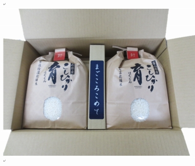【令和元年産】富山県産こしひかり 育(はぐくみ)白米2個セット