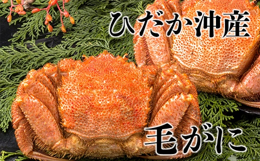日高沖産毛がに3尾セット(330g×3)