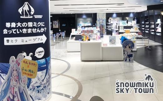 【新千歳空港限定:雪ミク】雪ミクちゃん*ラーメン10食セット