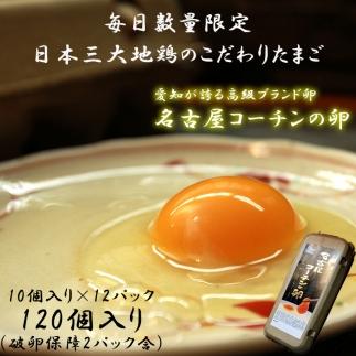 ☆名古屋コーチンの卵12パック(破卵保証2パック含)
