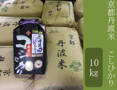 【定期便】京都丹波米 こしひかり・きぬひかり セット定期便 (10㎏(5kg×2)×3回)令和元年産米