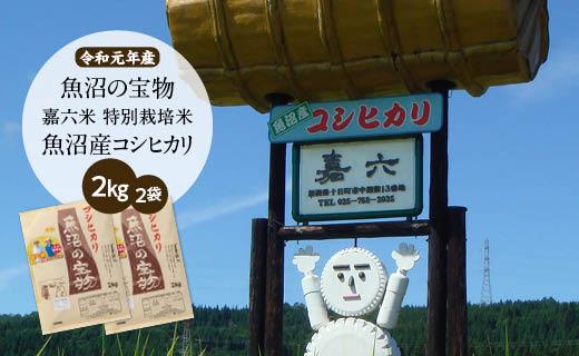 【令和元年産】(2㎏×2袋)魚沼の宝物 嘉六米特別栽培米魚沼産コシヒカリ