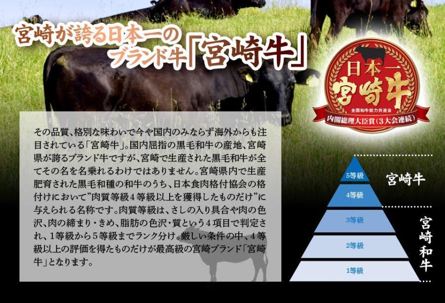 安楽畜産 宮崎牛プレミアムハンバーグ5個セット