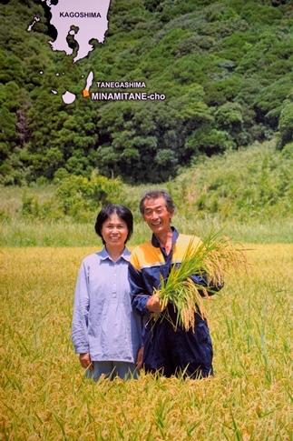 令和2年産 「日本一出荷の早い新米」種子島産コシヒカリ10kg(5kg×2)