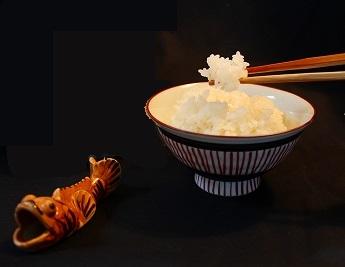 【2019年新米】◆無農薬・無化学肥料◆ラムサールふゆみずたんぼ米(コシヒカリ)【精米5kg】