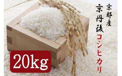 令和2年度 京丹後コシヒカリ20kg