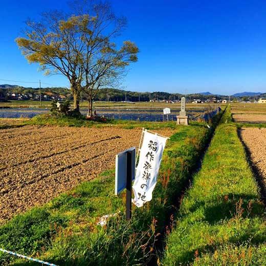 令和元年度特別栽培米京丹後コシヒカリ10kg