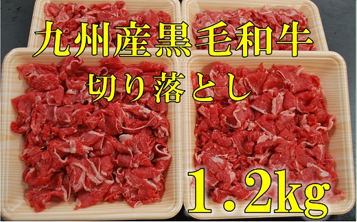 HA38-11復刻!九州産黒毛和牛切り落とし 1.2㎏