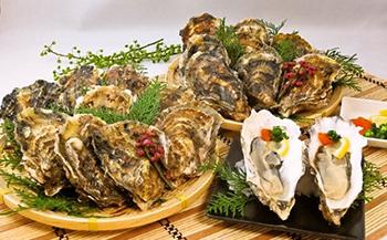 【ポイント交換専用】厚岸産殻付き牡蠣(丸Lサイズ20個セット)
