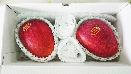 ★早期先行予約★アップルマンゴー2kg