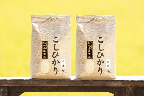 令和元年産新米!!南魚沼産コシヒカリ(白米)【5kg×2袋】