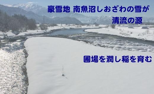 【定期便】生産者限定契約栽培 南魚沼しおざわ産コシヒカリ(4Kg×9ヶ月)
