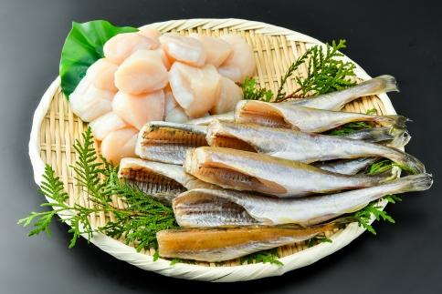 【数量限定】<網走前浜産>無添加ホタテ貝柱【300g】&生干し氷下魚(コマイ)【500g】