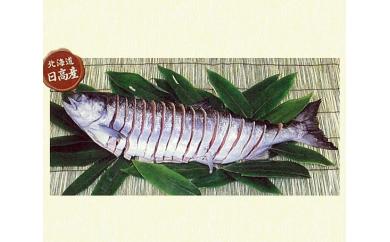 熟成塩蔵さけ(山漬け)約2.5kg<ひだか漁組>