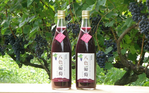 カベルネ・ソーヴィニヨン 八色葡萄ジュース2本セット