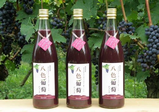 カベルネ・ソーヴィニヨン 八色葡萄ジュース3本セット