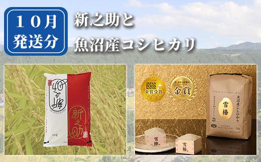【数量限定】お米と共に届く津南町の特産品詰め合わせ定期便全6回発送【セットB】