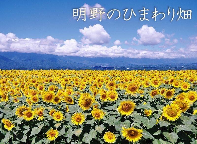 【清里・八ヶ岳】JTBふるさと納税旅行クーポン(15,000円分)