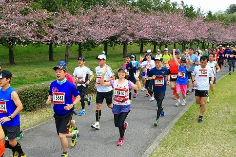 【50名限定】「第12回おやま思川ざくらマラソン」フルマラソン参加権1名様分