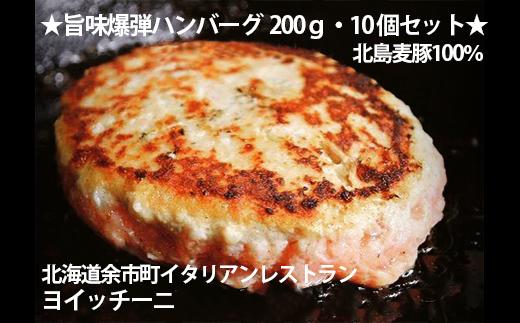 ☆旨味爆弾ハンバーグ10個セット☆<ヨイッチーニ>北島麦豚使用!