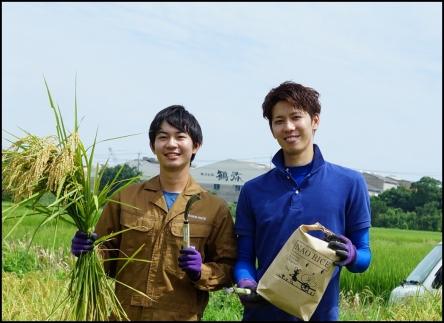 【おいしいお米】ひとめぼれ 10kg