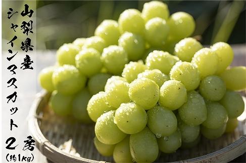 【先行予約:限定300箱】日本一の葡萄の里・山梨県産シャインマスカット2房(約1kg)