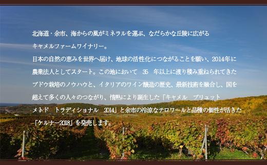 【NEW】キャメル・ブリュットメトドトラディショナル2014