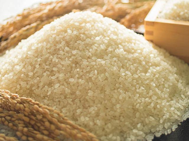 2019年秋収穫分福岡県産ヒノヒカリ3kg