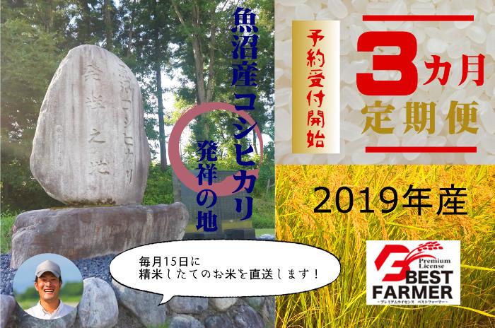 【2019年産定期便】魚沼コシヒカリ10㎏×3ヶ月