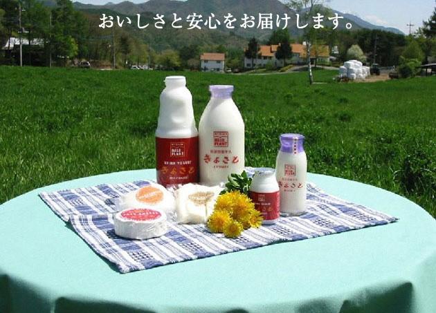 清里ミルクプラントオリジナル人気のチーズ3種セット T-2220