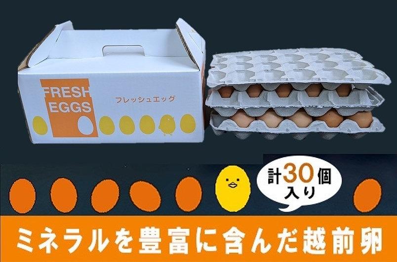 ミネラルを豊富に含んだ越前赤玉子27個入り+卵割れ補償3個(計30個)