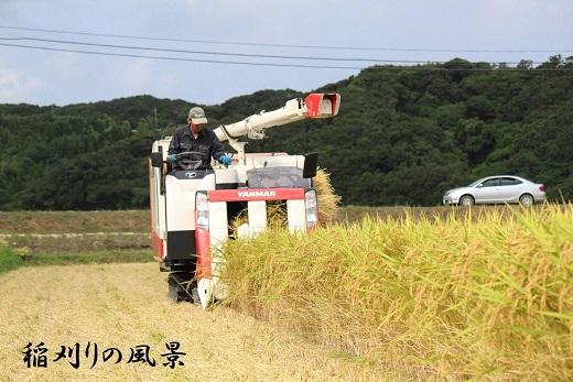 中種子町JALふるさとクーポン27000&ふるさと納税宿泊クーポン3000
