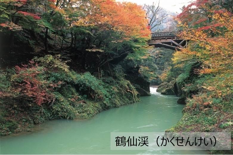 加賀市るるぶトラベルプランに使えるふるさと納税宿泊クーポン150,000円分