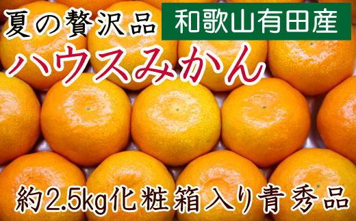 【夏の贅沢品】有田産のハウスみかん青秀品約2.5kg(化粧箱入り)