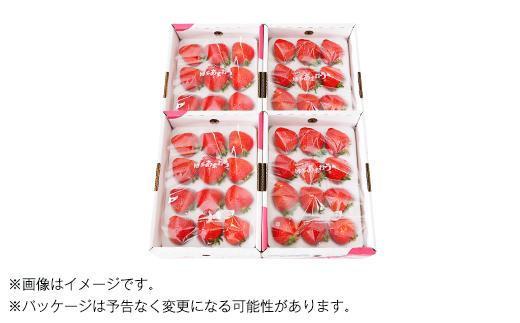 【2020年2月下旬発送開始】国産あまおう1kg(250g×4パック)福岡県産いちご