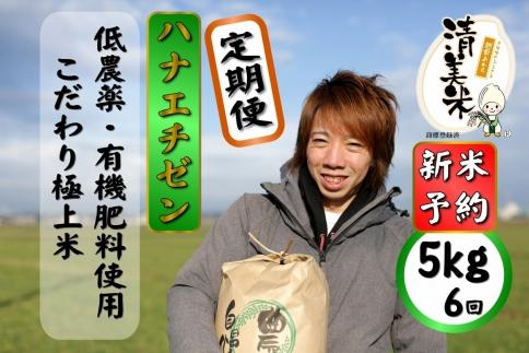 【2020年度産】定期便5kg(6回、30kg)低農薬極上米『ハナエチゼン』