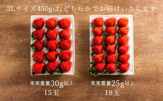 ★福岡の産直いちご農家★武下さんちの完熟あまおう3Lサイズ450g