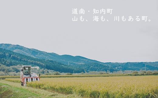 EE004「ゆきさやか10㎏」定期便12回(特別栽培米産地直送)<帰山農園>【79200pt】