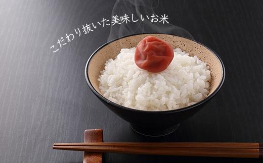 FF002★金賞農家★が作る「こだわり米」5kg《杉本農園》【2700pt】